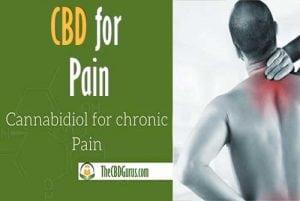 cbd capsules for pain