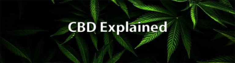 What is CBD Short For?